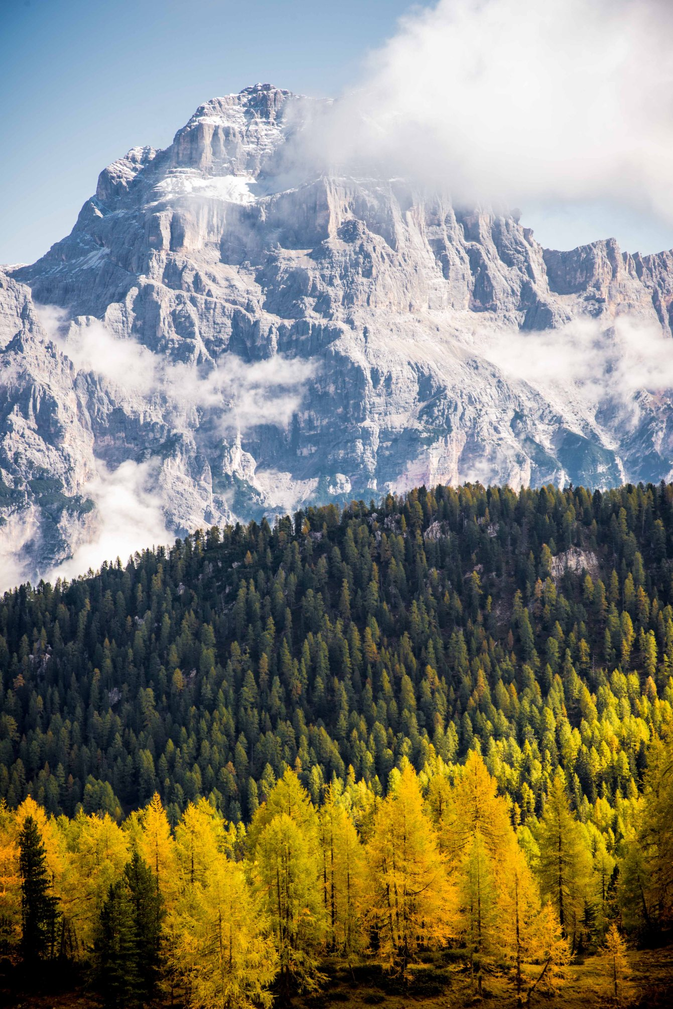 Autumn from Croda da lago sorapis cortina