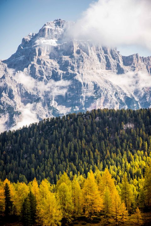 Autumn from Croda da lago sorapis cortina