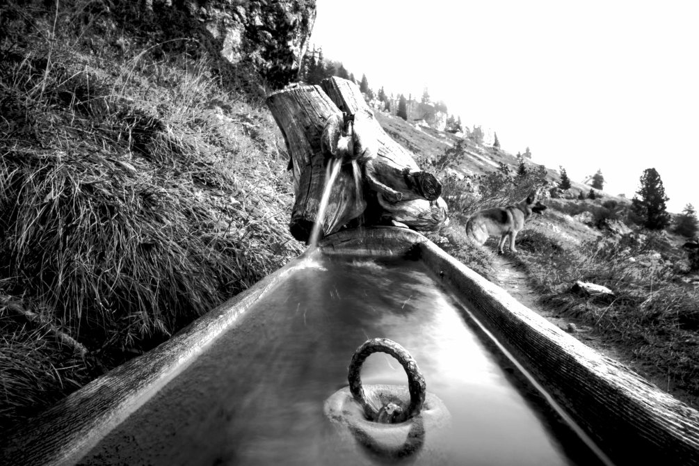 Fountain around 5 torri black and white