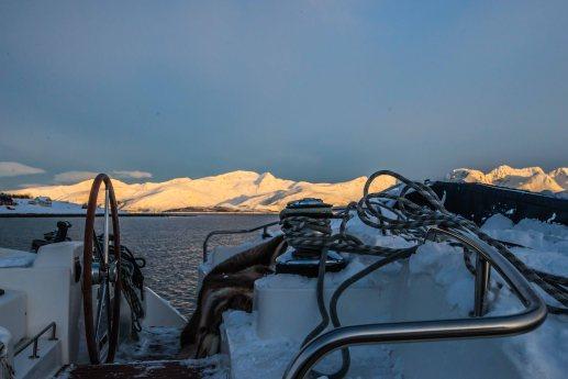 Lyngen mountains turning orange at sunset picture taken while sailing north.